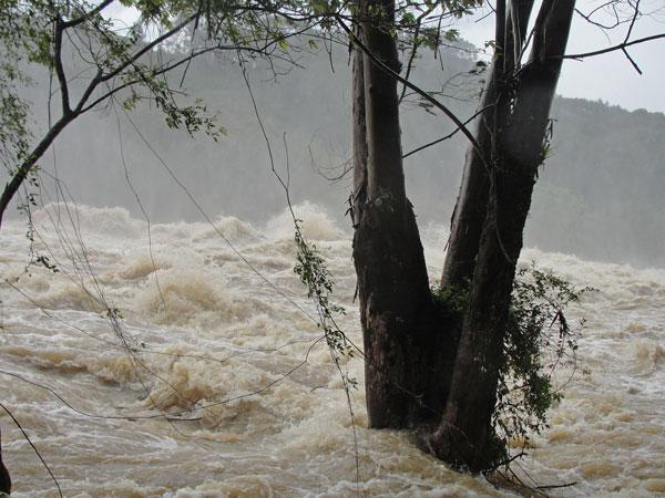 Enchentes de Santa Catarina